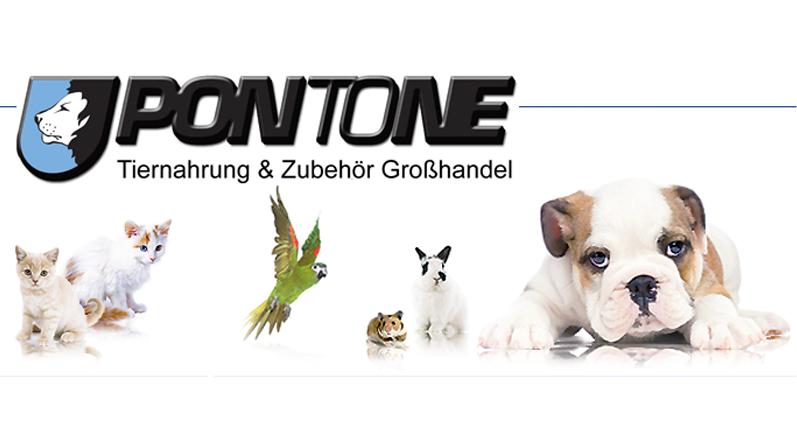 Pontone